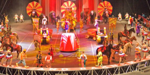 One of the Ringling Bros. shows I reviewed a few years back.