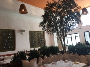 Fig and Olive's interior. Photo by Lisa Politz.