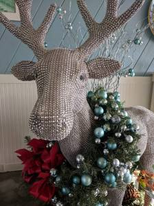 The Rhinestone Reindeer at Back on the Beach.  Photo courtesy of Fred Deni.