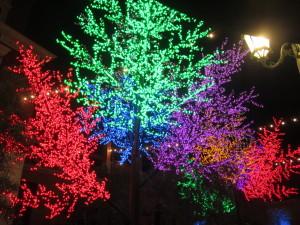 The beautiful tree lights on the patio.  Photo by Karen Salkin.