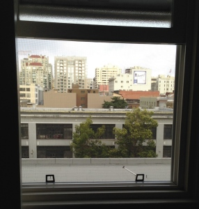 The view out our window. Photo by Karen Salkin.