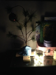 My bad photo of the tree and lights.  But you can see how special it all is, can't you?  Photo by Karen Salkin.