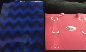 "The bags Karen filled for Steven and Denise--blue for him and a pink-ish-red ""handbag"" for her!  Clever, eh?  Photo by Karen Salkin."