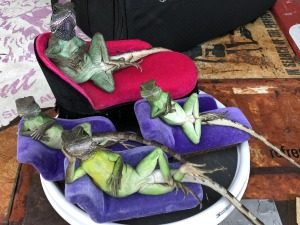 I just had to show you the lizards! Photo by Karen Salkin.