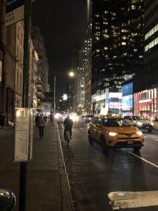 Another view of Manhattan. Photo by Karen Salkin.