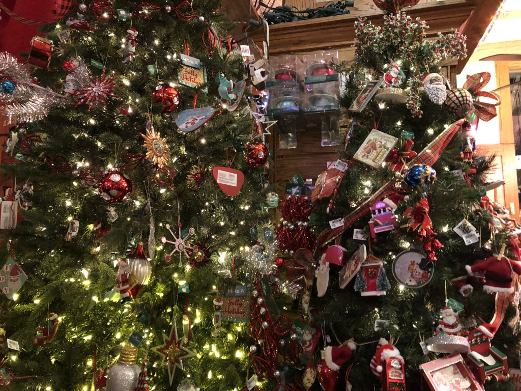 Just two of the thirty-two trees at Fair Oaks Pharmacy!  Photo by Karen Salkin.