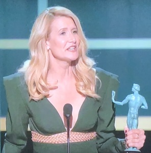 ...this drabness of Laura Dern!!!  See what I mean?  It was kind-of visually shocking. Both photos are by Karen Salkin.
