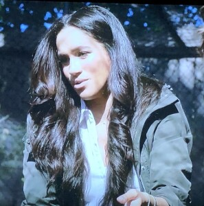 "Meghan Markle and her ""authentic"" hair extensions!  Photo by Karen Salkin, off the TV screen."